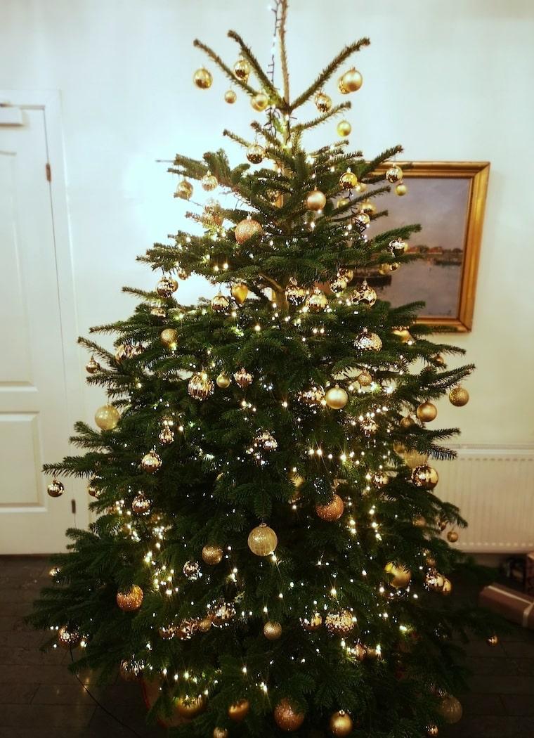 Jul på Hotel Gilleleje Strand